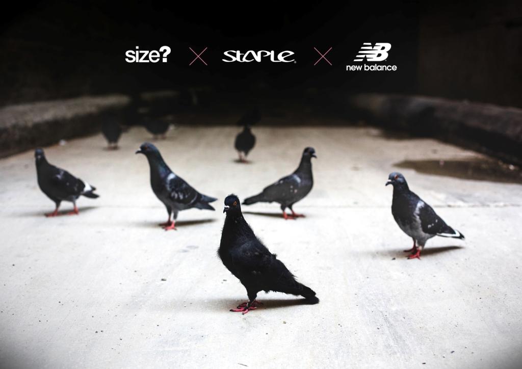 Black pigeon new balance - photo#7