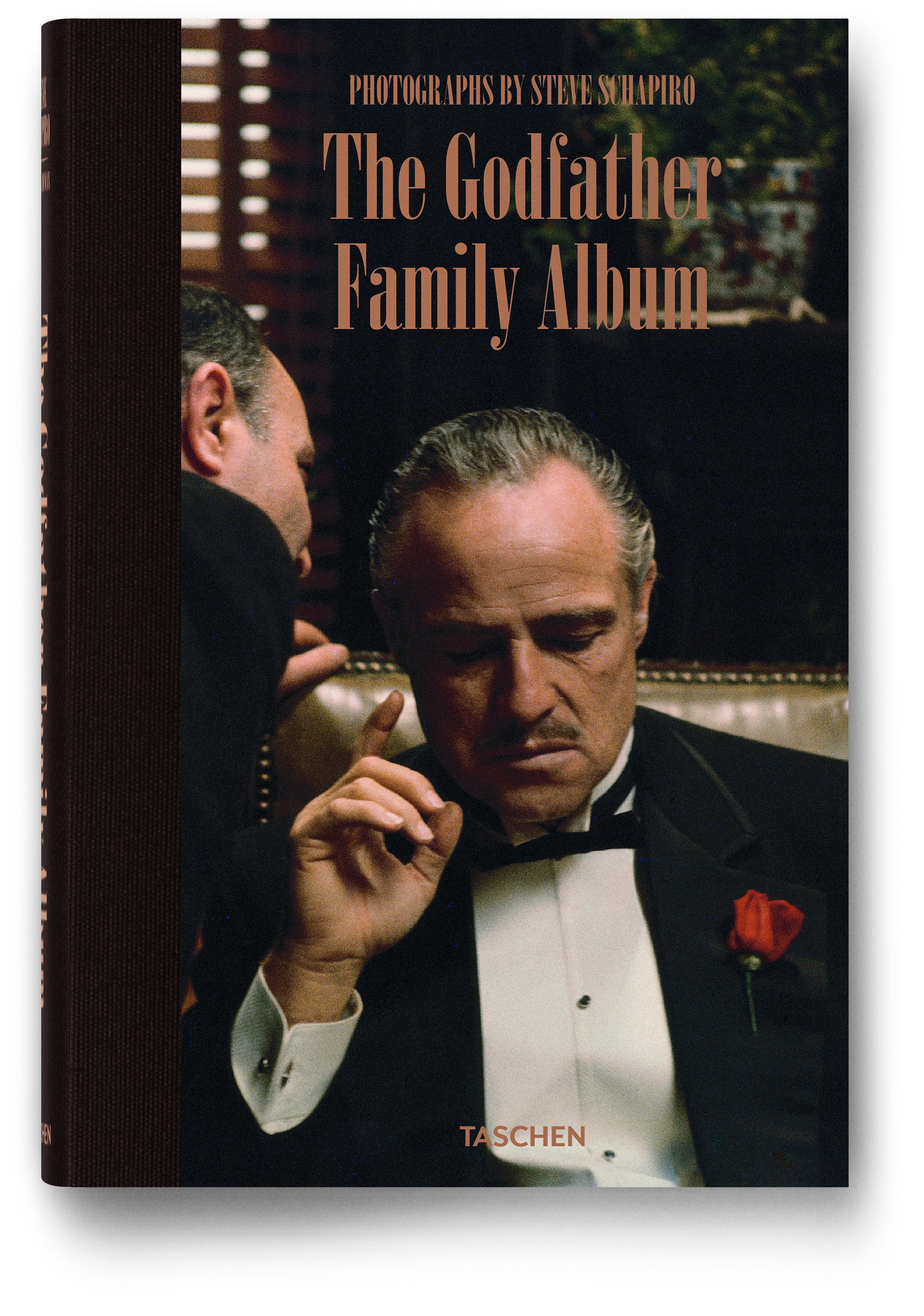 An analysis of michael corleones wedding in the godfather by mario puzo