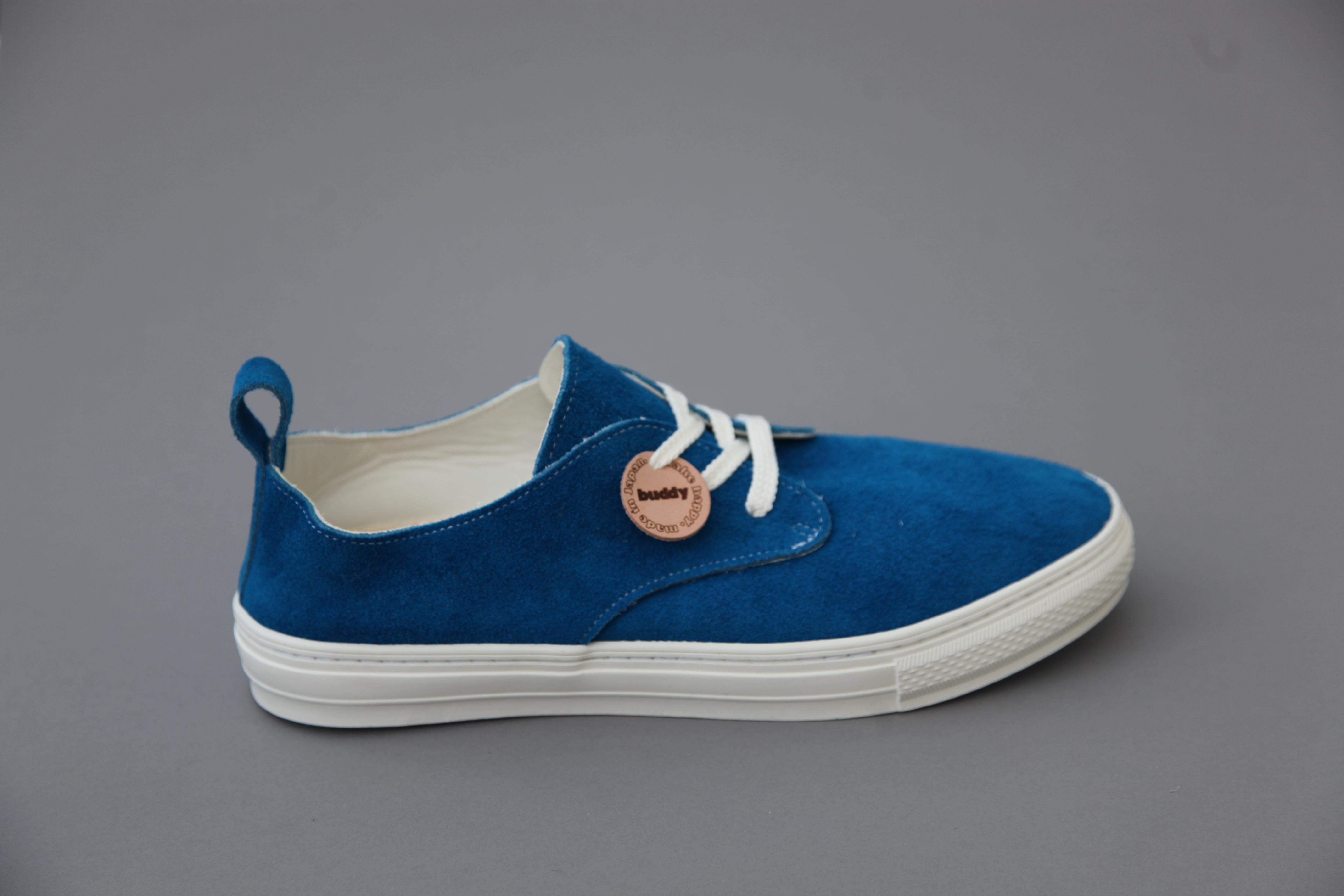 Corgi-Blue-2