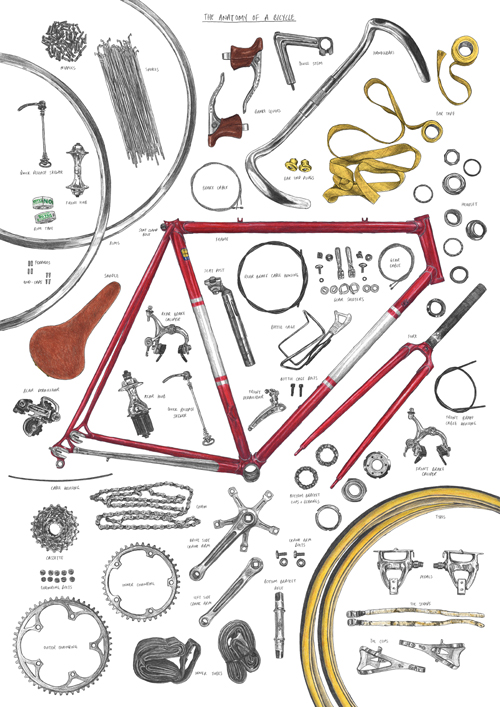 Anatomy-of-Bike-