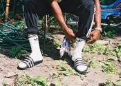 adidas Originals Ollie Olanipekun 2