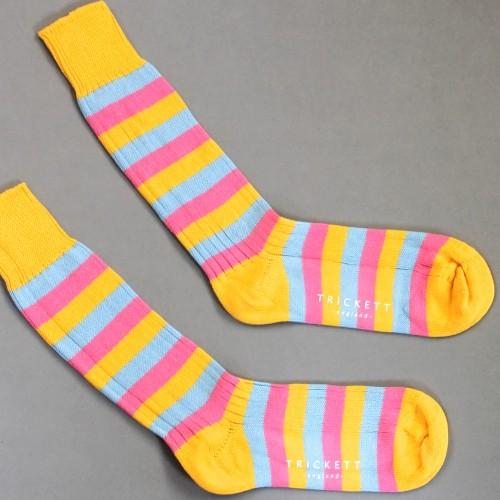 Z-Sock-Image-500x500