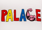 PALACE_LONGSLEEVE_WHITE_DETAIL2._1024x1024
