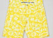 braunton_shorts_-_morris_yolk_2__1